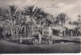 2785196Suez, The Moses Fountain - Suez