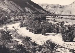 MAROC---RARE---TAFILALET--la Vallée Du Ziz---voir 2 Scans - Maroc
