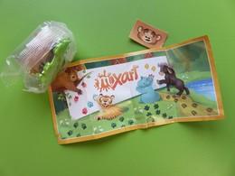 067 - Kinder Surprise - Mixart - Timbres Pour Animaux - Ours - SE142E + BPZ - 2018 - Montables