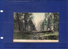 ##(ROYBOX1)- Postcards - Russia - Altaj - Used 1915 - Russia