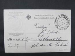 KARTE Strassnitz Straznice - Cetkovice 1913 Portofreie Dienstsache ///  D*36364 - 1850-1918 Imperium
