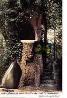 TIEGHEM - Arbre Formant Une Chaire De Vérité Rustique - Carte Colorée Et Circulée En 1902 - Anzegem
