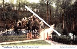 TIEGHEM - Grotte Au Bois Et Aquariums - Carte Colorée Et Circulée En 1902 - Anzegem