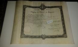 VP14.357 - PARIS 1904 - Grand Diplôme ( 50 X 39 ) De Docteur En Médecine - Mr HUZARD Né à SAINT - ETIENNE DE CORCOUE - Diplômes & Bulletins Scolaires