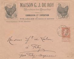 406/28 -- BELGIQUE VOLAILLE - Lettre Illustrée Maison De Roy à MERCHTEM Lez Bruxelles 1898 - TP Fine Barbe - Hoftiere