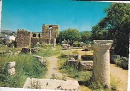 LIBAN----BYBLOS--vue Générale Des Ruines Gréco-romaines--voir 2 Scans - Liban