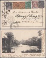 "CONGO CP OBL MARITIME ""LOANGO A MARSEILLE L.M.N°2""1900 ""GRUSS AUS KRIBI""   (6G18547) DC-MV544 - Congo Français (1891-1960)"