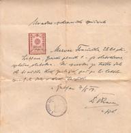 3706   SLOVENIJA  SHS   2 KRONI  1919  DOKUMENT - Slovénie