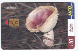 Télécarte TC 156 A Champignon Uruguay, Russule Spissa - Phonecards