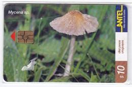Télécarte TC 158 A Dans Son Blister, Champignon Uruguay, Mycene - Télécartes