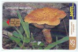 Télécarte TC 160 A Dans Son Blister, Champignon Uruguay, Gymnopilus Spectabilis - Télécartes