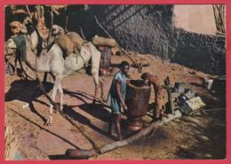TCHAD - FORT-LAMY - Moulin à Huile * Animation * 2 SCANS *** - Tchad