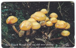 Télécarte De Jersey, Champignonn Mushroom - Télécartes