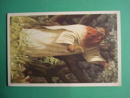 Belgie Verzameling 's Land Glorie De Druiden - Histoire