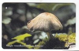 Télécarte De Jersey, Champignon Mushroom - Télécartes