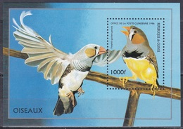 Guinea 1996 Tiere Fauna Animals Vögel Birds Oiseaux Aves Uccelli Grasfinken Finken Finches, Bl. 502 ** - Guinea (1958-...)