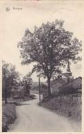 Bovigny, Carte Postale (pk54534) - Gouvy