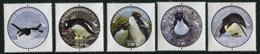 ROSS Dependency 2014 - Faune, Pingouins - 5 Val Neufs // Mnh Set - Dépendance De Ross (Nouvelle Zélande)