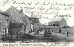 Doische NA4: Rue Du Château Et Vue De La Ferme 1906 - Doische