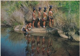 DAILY TASK-ZULU GIRLS COLLECTING WATER,SOUTH AFRICA POSTCARD - Sud Africa
