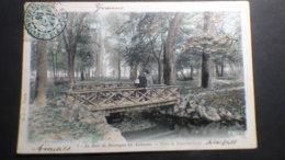 CPA   BELLE CP  COULEUR  UN HOMME SUR LE PONT PASSERELLE   VERS LE PALMARIUM  BOIS DE BOULOGNE - Parques, Jardines