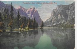 AK 0141  Toblachersee Im Hochpustertal - Verlag Werth Um 1911 - Bolzano (Bozen)
