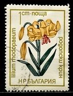 Bulgarie - Bulgarien - Bulgaria 1973 Y&T N°1973 - Michel N°2197 (o) - 5s Fleur De Cactus - Bulgarien