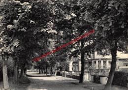 Avenue Maréchal Foch - Rixensart - Rixensart