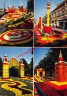 Tuinbouwcentrum - Jaarlijks Begonia-festival - Lochristi - Lochristi
