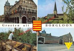 Groeten Uit - Borgloon - Borgloon