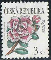 Tchéquie 2008 Yv. N°502 - Azalée - Oblitéré - Tchéquie