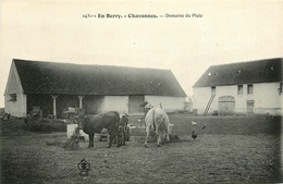 Chavannes - Domaine Du Plaix - Ferme - Belle Animation - Other Municipalities