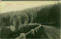 ROMANIA - BORSZEK - SZERPENTIN UL - BY GYULA KIADASA - 1910s (BG2269) - Romania
