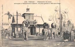 CPA TONKIN - Elephants Du Laos Envoyés à L'Exposition D'Hanoï. Le Plus Grand A 150 Ans D'âge - Vietnam