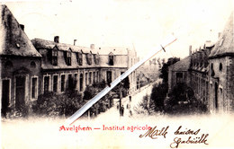 AVELGHEM - Institut Agricole - Carte Circulée En 1903 - Avelgem