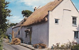Postcard The Thatcher Devon [ Men Replacing Thatch Roof ] My Ref  B12833 - Craft