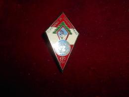 INSIGNE 420 DSL LIBAN 1983/1984 12 MANDAT FAB DLST - Army