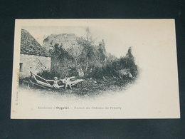 ORGELET    1900   VUE       / CIRC /  EDITION - Orgelet