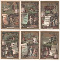 Figurine, Chromos, Victorian Trade Cards. Liebig S.193 BEL. Cuochi E Cuoche 2°. Cuisiniers 2° - Liebig