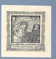 """Vintage EX LIBRIS. Beautiful  BOOKPLATE Portugal With Latin Motto """"VITAM IMPEDERE VERO"""" - Ex-libris"""