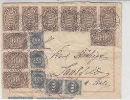 Multifrankatur Aus NEUHAUS 19.9.23 Nach Saalfeld - Briefe U. Dokumente