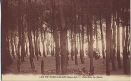 CPA 76 Les Petites Dalles Sous Bois Des Sapins  Voyage 1935 Rare - Autres Communes
