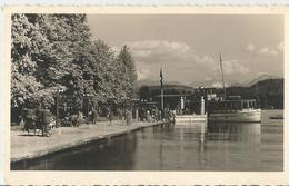 NAVE WULFENIA - ANIMATA    (548) - Barche