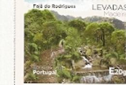 Portugal ** & Gardens Of Portugal, Azores, Fajã Do Rodrigues 2018 (5578) - Plants