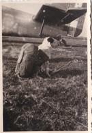 Photo Ancienne  Chien Mascotte Parachutiste - Aviación