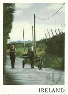 Irlanda (Ireland) Irish Landscape, Small Country Road, Paesaggio Rurale, Carro Trainato Da Asino Accompagnato Da Un Cane - Irlanda
