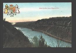 Lower Niagara River - Birds Eye View - NY - New York