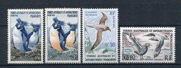 Französisch Antarktis TAAF  Kleines Lot               ** MNH               (016) - Colecciones & Series