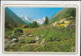 VAL D'AOSTA - COGNE-VALNANTEY -GIARDINO BOTANICO PARADISIA  - VIAGGIATA 1997 - Italia