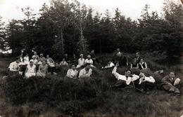 Carte Photo Originale D'une Sieste Géante Pour Jeunes étudiants En Vadrouille, Filles & Garçons Séparés En Forêt 1920/30 - Personnes Anonymes
